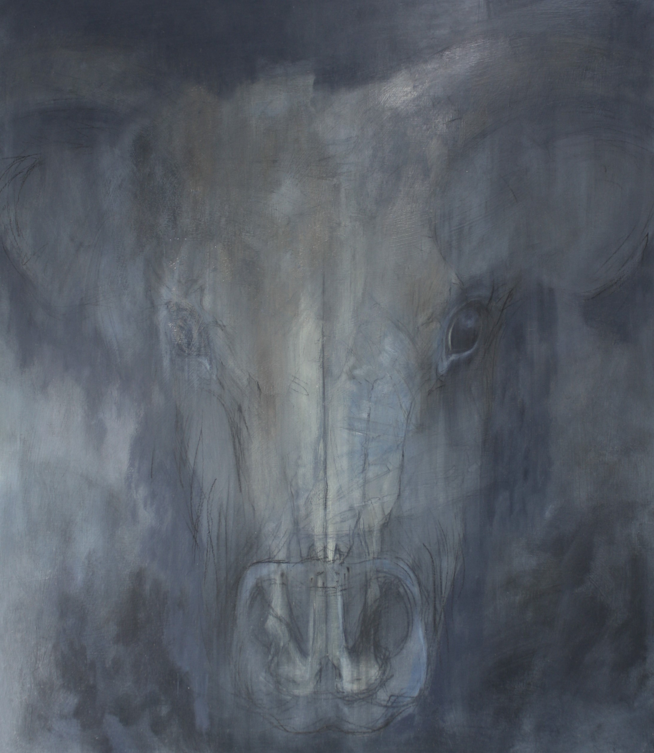 'Aurochs'