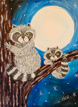 Racoons in the Evening