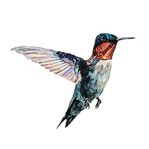 Happy Hummingbird (Print)