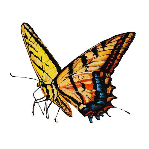 Flying Butter Bird Print