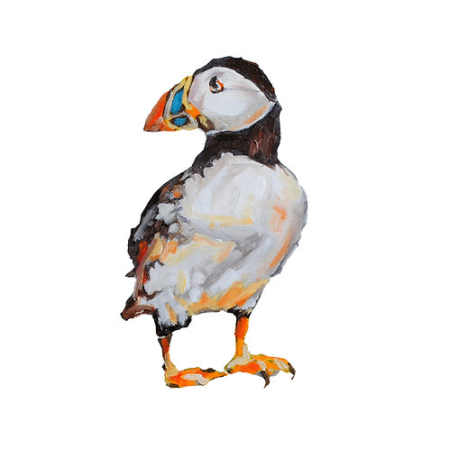 Percy the Puffin