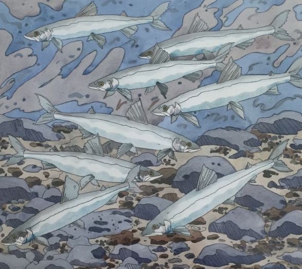Neil Welliver - Smelts