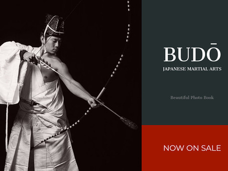 BUDŌ -Japanese Martial Arts- is now on sale!