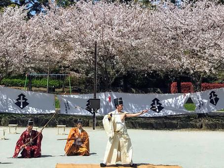 静岡まつりで展示・蟇目の儀・木馬による演武が行われました