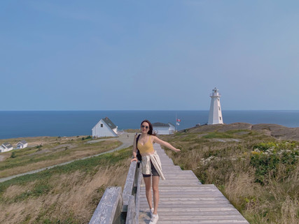 Places to Explore in Essential Newfoundland -  Decoding the Newfoundland Mystique