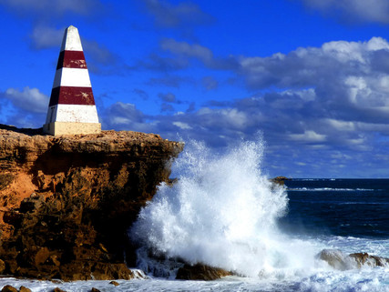 Must Do Day Trips From Sydney - Find Yourself in the Land Down Under