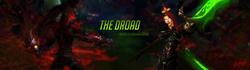Droad Banner ff
