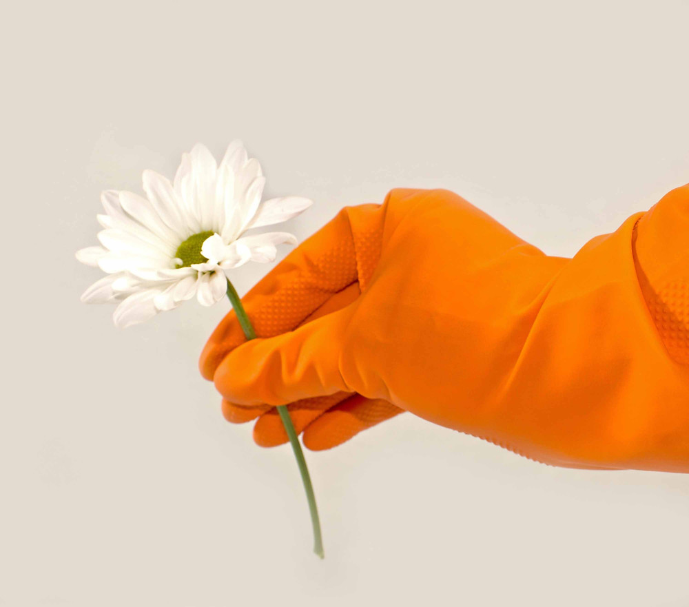 Learn about these five ways to spring clean your career.