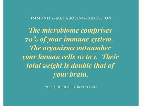 Microbiome Explained