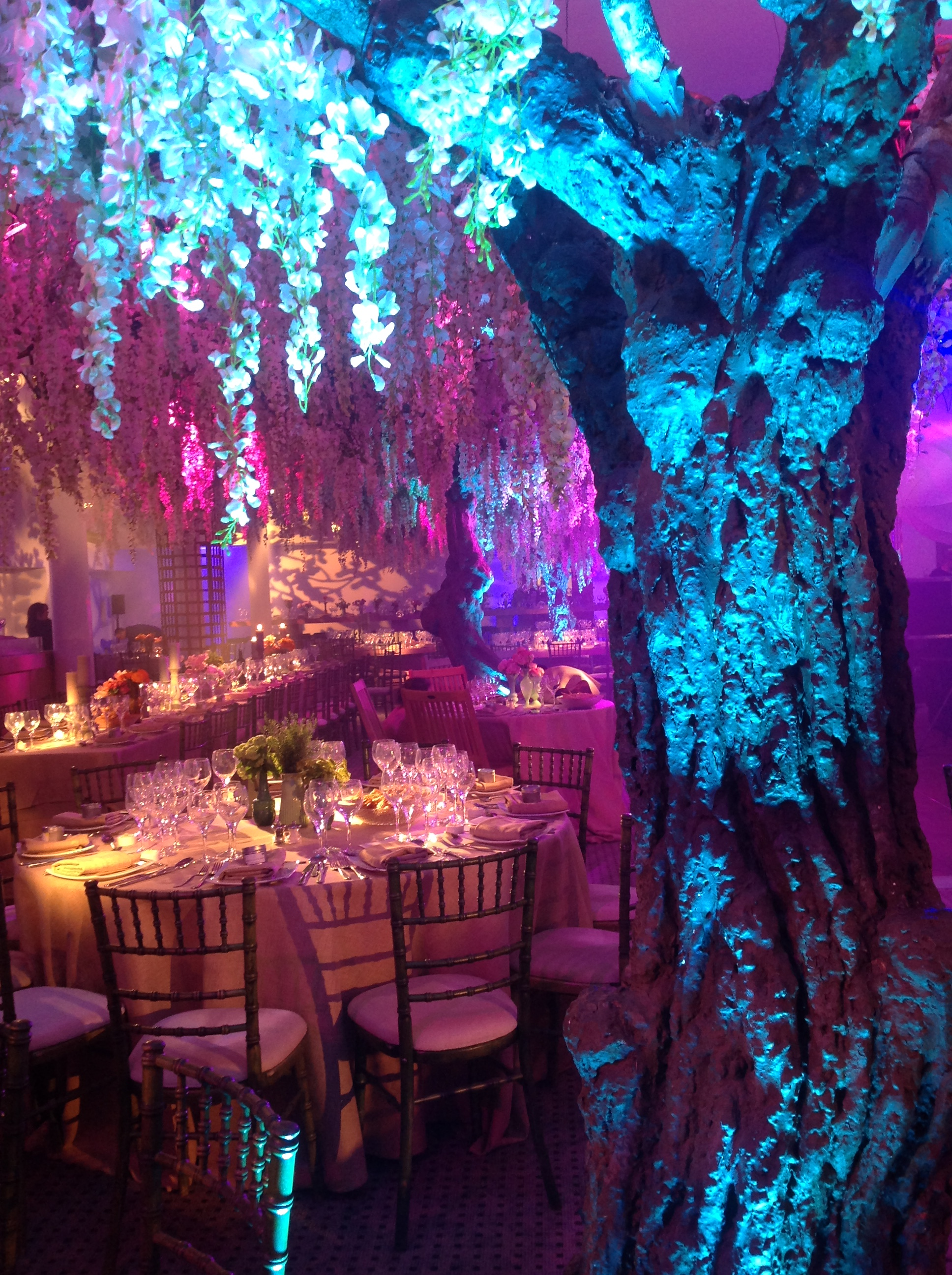 ENCHANTED FOREST BATMITZVAH