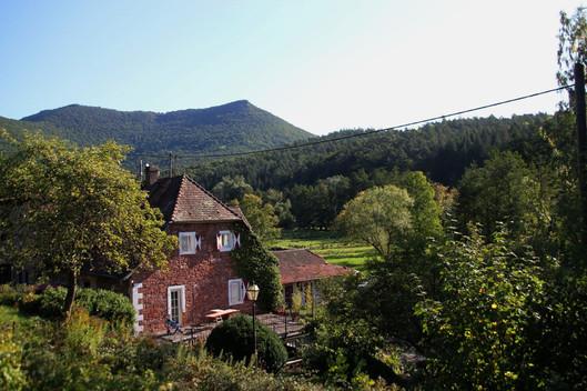 Blick über den Vogelstockerhof
