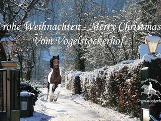 Frohe Weihnachten vom Vogelstockerhof!