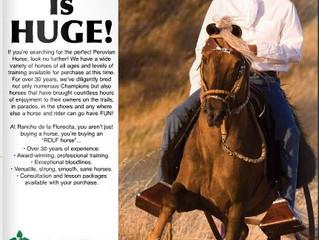Auszug aus dem NAPHA Nationals Programm 2012