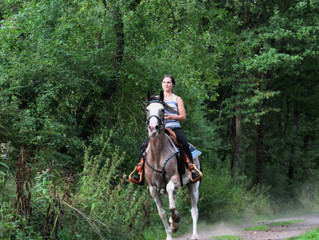 Wonderful day with some friends and gaited horses