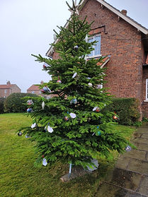 Bugthorpe Christmas Trees 2020