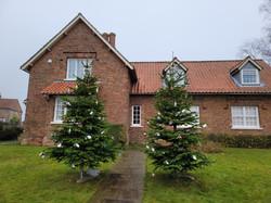 Bugthorpe Christmas Trees 2020
