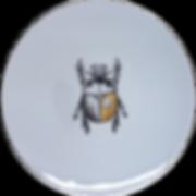 scarabée.png