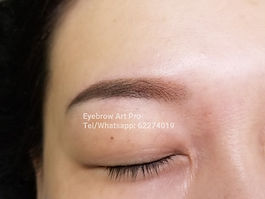 eyebrow_embroidery_powder_fill_new4.jpg