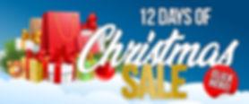 12 days of christmas sale.jpg