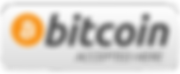 bitcoin accepted_burned.png