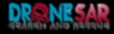 DroneSAR Logo