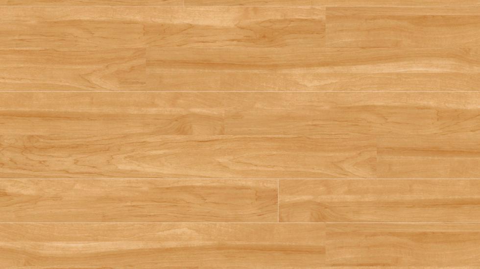 Project Floors PW 1905