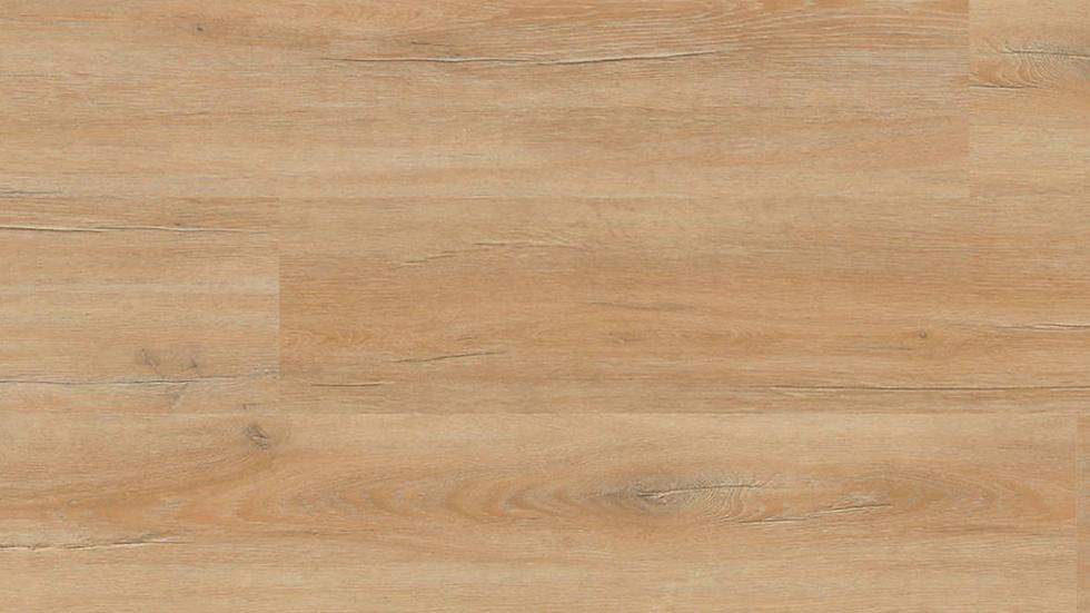 Project Floors PW 3913