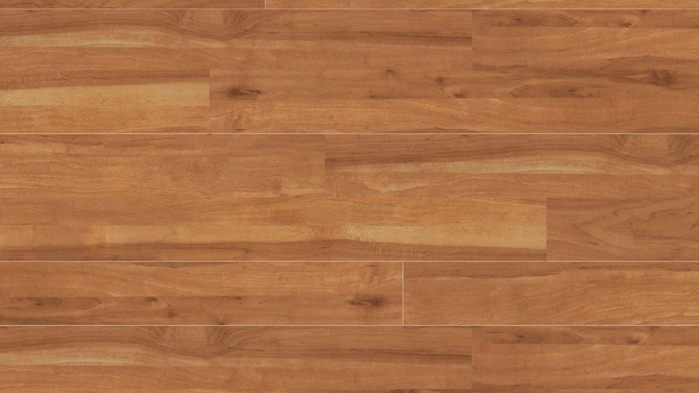 Project Floors PW 1907