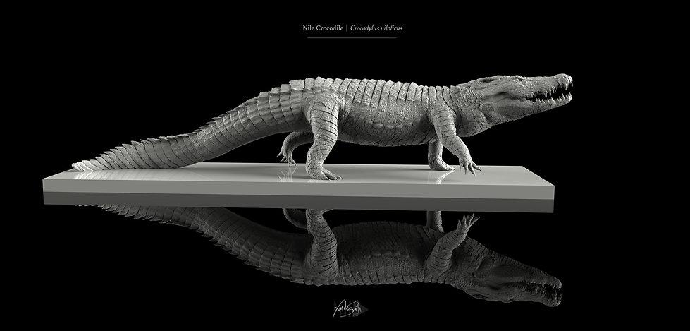 Crocodile Digital Sculpture Zbrush 3D Print Keyshot Xander Smith Design