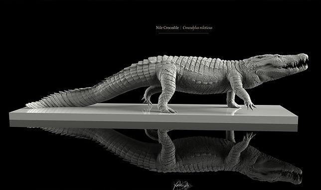 Crocodile Sculpture 3D Printing Zbrush Keyshot Xannder Smith Design