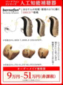 DMスキャンa_edited.jpg