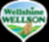 Wellshine Wellson Company Logo. 2 kangaroos in sunny Australia