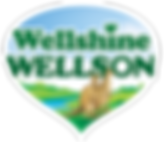 Wellshine Wellson Company Logo.png