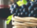 Fresh Wine Grapes, Merlot Cabaret Sauvignon by Wellshine Wellson Australia