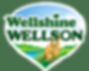 Wellshine Wellson Dairy Australia Logo