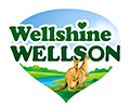 Kangaroos, green valley healthy living near water, Wellshine Wellson Dairy Australia