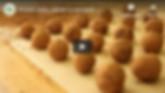 Protein Balls Wellshine Wellson Dairy Au