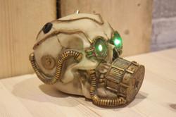 Skull Green Vision