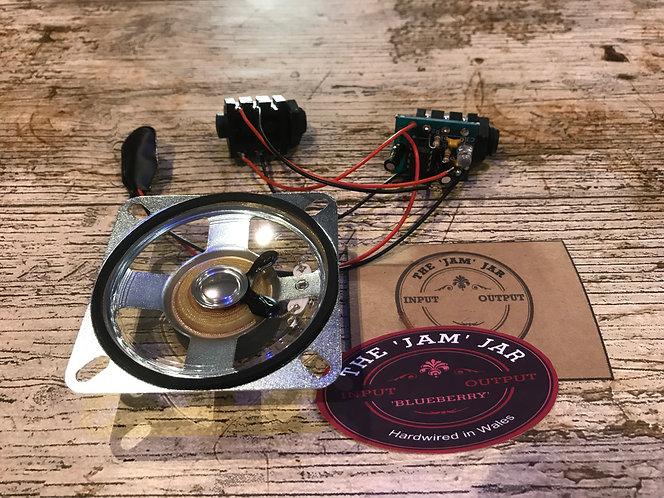 Blueberry Amp Kit - Prebuilt WITH SPEAKER