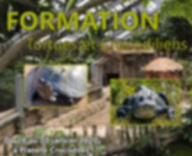 Affiche Formation Reptiles Croco HD.jpg