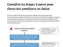 procedure cameleon suisse couverture.JPG