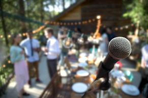 Cantante de la boda en el escenario
