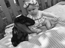 Baby Grae & Baby Goat