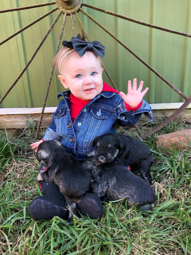 Graelyn with Puppies
