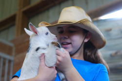 Darcie and Baby Goat