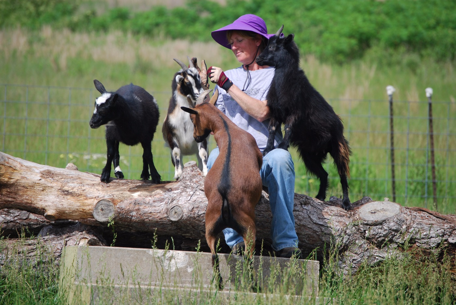 Just me and my goats