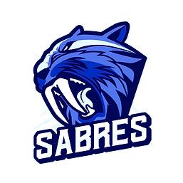 Sabres .png