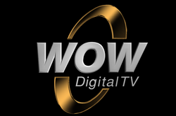 WOW Gold Logo