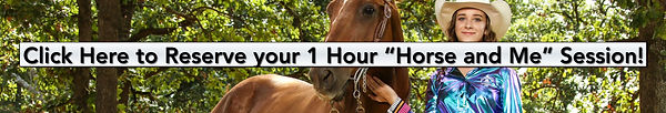 Horse and ME FINAL Banner.jpg
