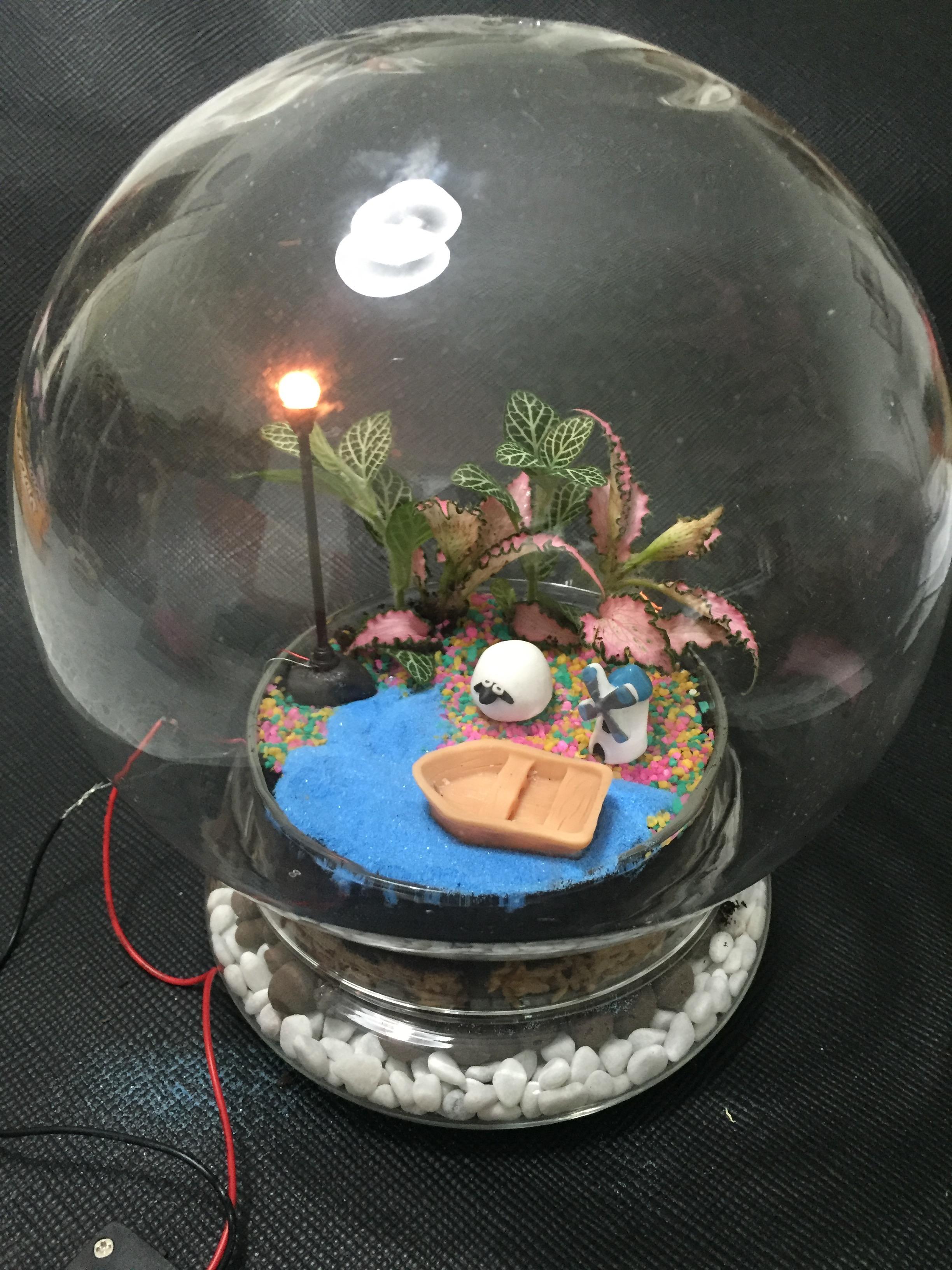 Candy Bulb Terrarium